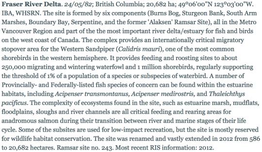 Fraser-River-Delta-Wetland-of-International-Importance